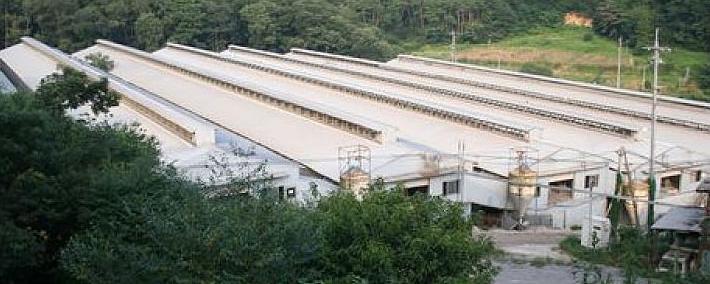 石本農場 広島