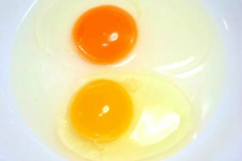 ishimoto egg