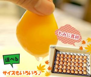 momiji egg