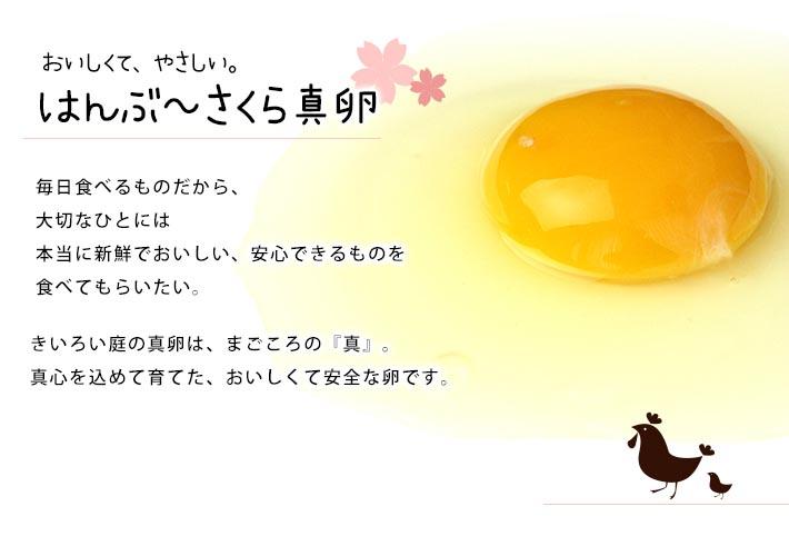 ishimoto sakura