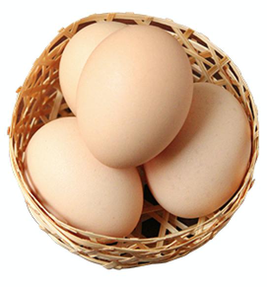 さくら 卵